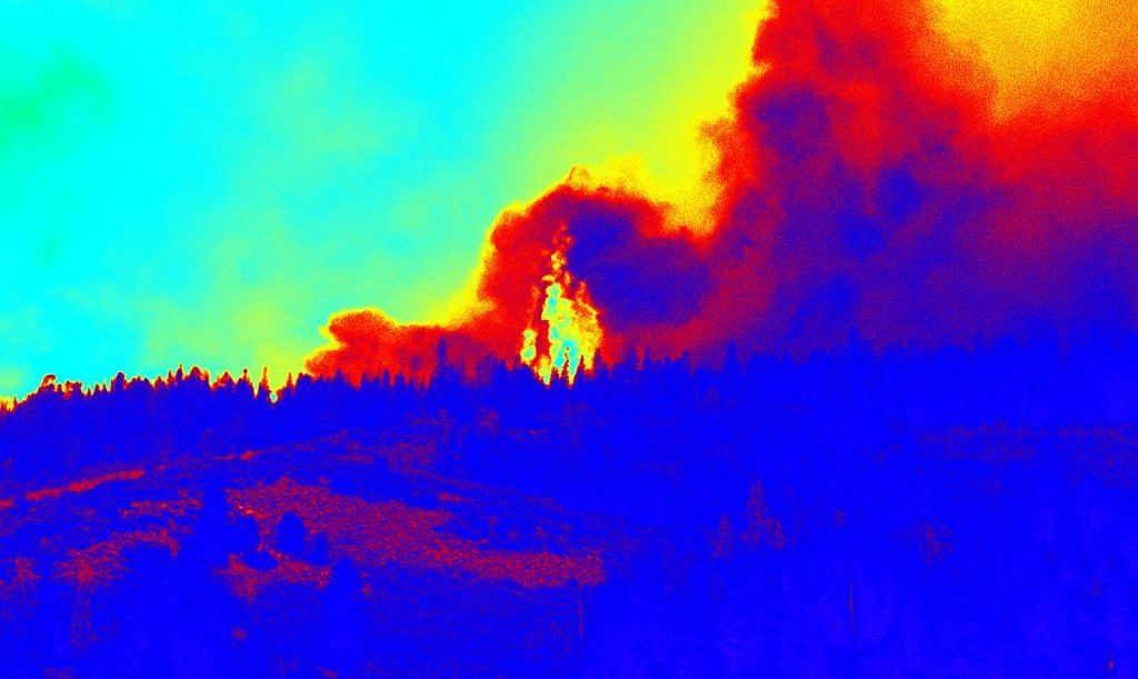Early detection of forest fires